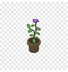 Isolated flowerpot isometric flower vector