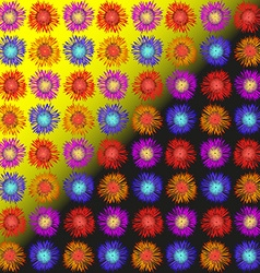 Asters daisies and hyacinths vector image vector image