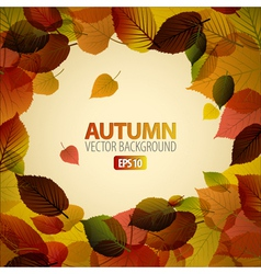 autumn abstract background vector image vector image