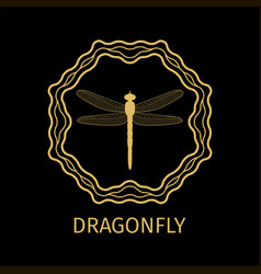 dragonfly in calligraphy framework label vector image