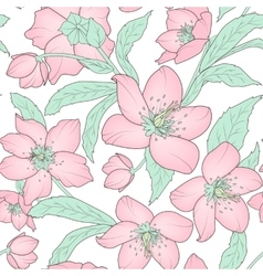 Hellebore floral seamless pattern pink green white vector