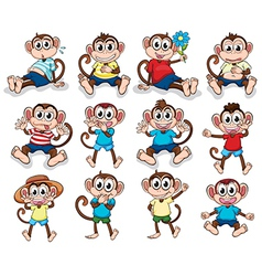 Monkeys with different emotions vector image