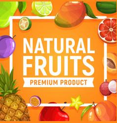 natural fresh tropic fruits cartoon poster vector image