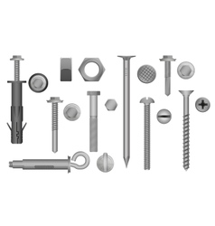 Construction Hardware set Bolts Screws Nuts and vector image