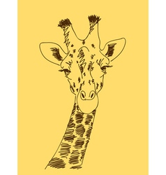 Hand drawn giraffe vector image