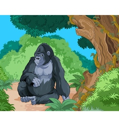 Sitting Gorilla vector image vector image