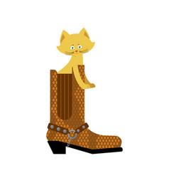 cat in boot isolated home pet in shoes vector image
