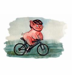 cycling pig character vector image