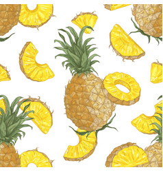 decorative seamless pattern with whole and cut vector image