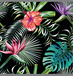 exotic tropical plants and flowers seamless black vector image