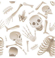 happy cute skeleton bones seamless partern or vector image