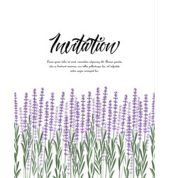 Natural background with lavender vector