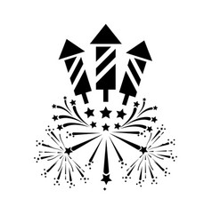 outline night firework to celebrate holiday vector image