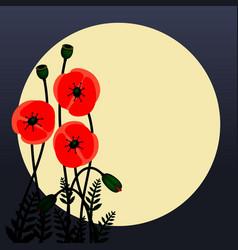 poppy flowers image vector image