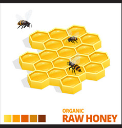 isometric sweet honeycomb and bees raw honey vector image vector image