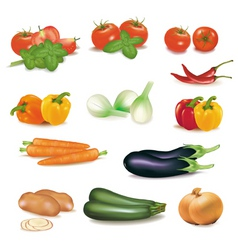 group of vegetables vector image vector image