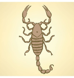 Sketch horrible scorpion in vintage style vector image