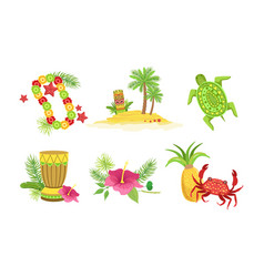 collection hawaiian traditional objects flower vector image