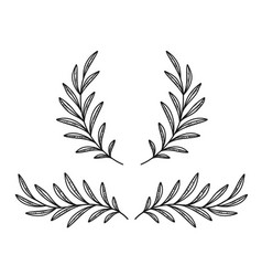 Hand drawn olive branches and wreath on white vector