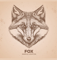Hipster animal fox hand drawing muzzle of animal vector