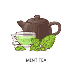 Mint tea drawing - glass cup with healthy green vector