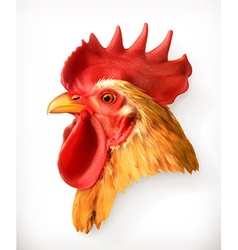 Rooster head realistic vector