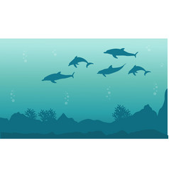silhouette of dolphin beauty landscape vector image