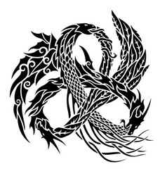 Tattoo with trinity dragons on white background vector