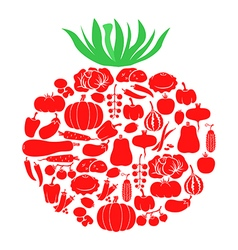 Tomato on vegetables vector