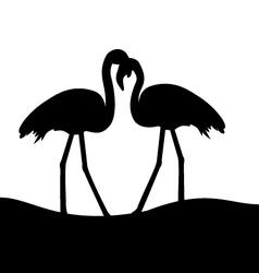 Tropical birds Flamingo vector