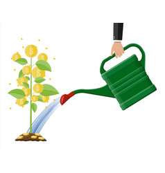 businessman hand watering money coin tree with can vector image vector image