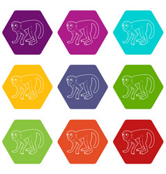 capuchin icons set 9 vector image
