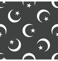 Crescent with star pattern vector image