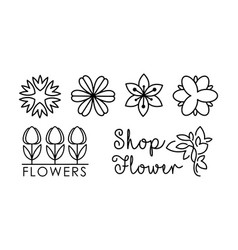 flower shop linear logo set floral design vector image