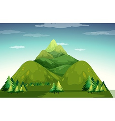 Mountain vector image vector image