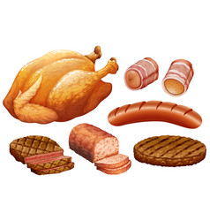 set of meat on white background vector image
