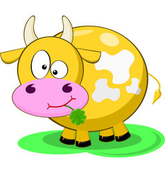 Yellow Cow vector image