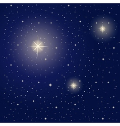 Bright stars during night vector image