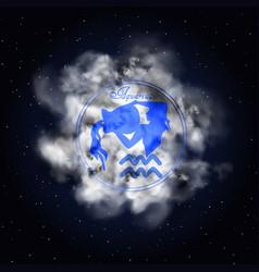 aquarius astrology constellation of the zodiac vector image