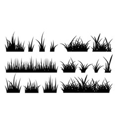 Monochrome of grass vector