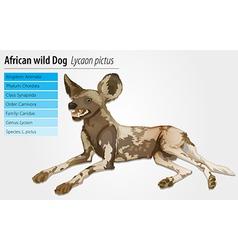African wild dog vector