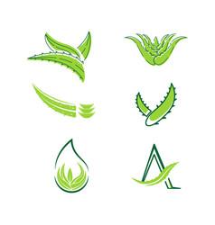 Aloe vera icon design vector