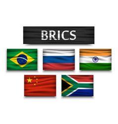 brics association of 5 countries vector image