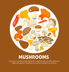 Edible species of mushrooms in messy heap inside vector