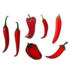 Red hot chilli cayenne and bell peppers vector