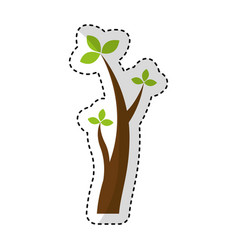 tree plant branches icon vector image