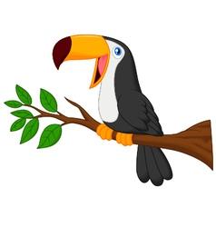 Cute toucan bird cartoon vector image vector image