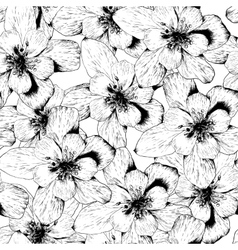 Beautiful Seamless Monochrome Floral Background vector image