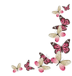 frame pink butterflies in flight isolated on vector image