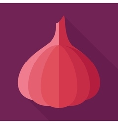 Garlic flat icon with long shadow vector image